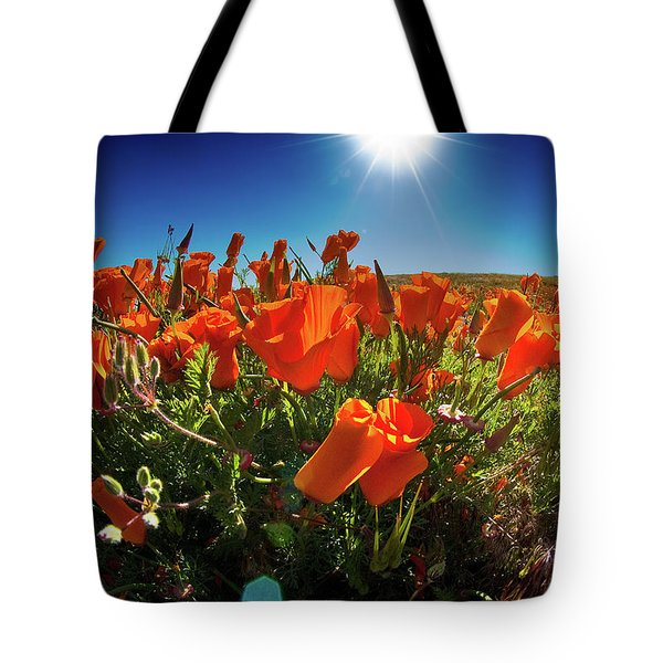 Tote Bag featuring the photograph Poppies by Harry Spitz