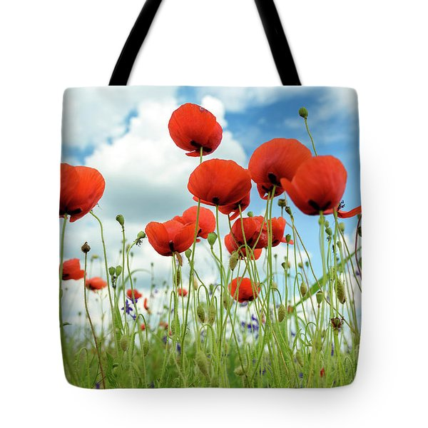 Poppies In Field Tote Bag