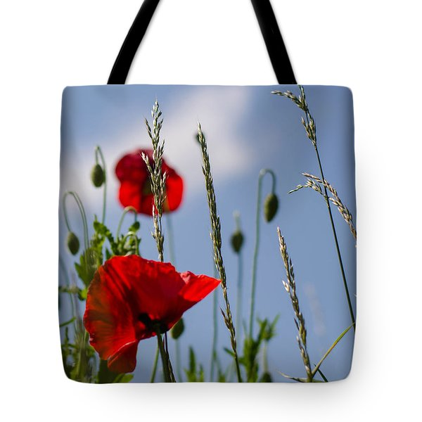 Poppies In The Skies Tote Bag by Rainer Kersten