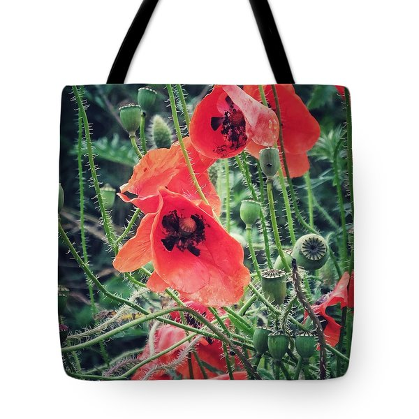 Tote Bag featuring the photograph Poppies by Karen Stahlros