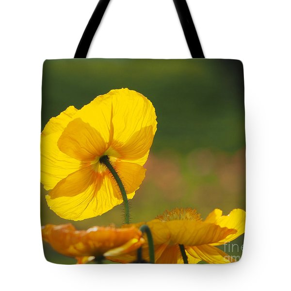 Poppies Seeking The Light Tote Bag