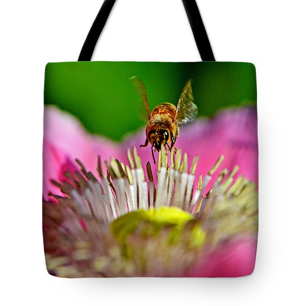 Poppy And A Bee 006 Tote Bag by George Bostian