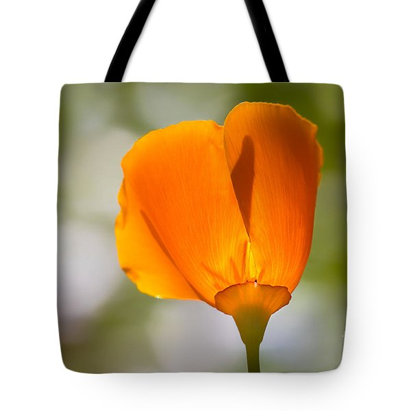 Poppy And Bokeh Tote Bag
