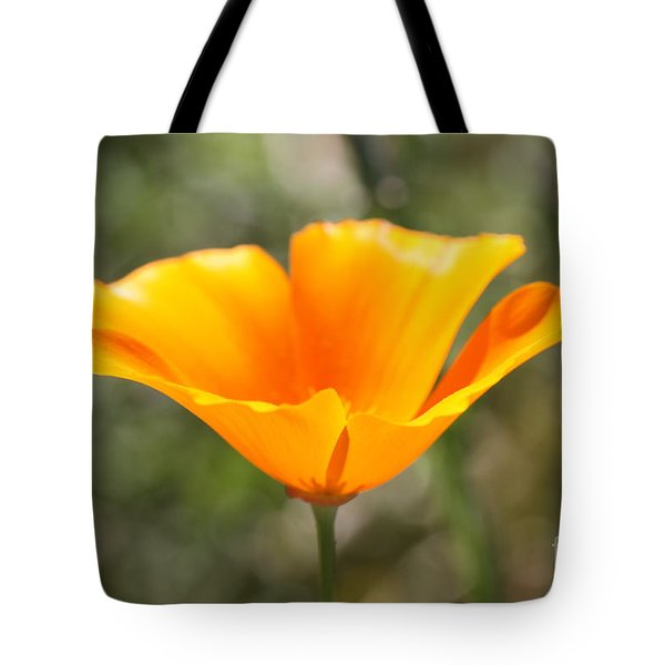 Poppy Flower Tote Bag by Cathy Dee Janes