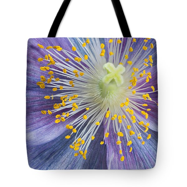 Poppy Fireworks Tote Bag