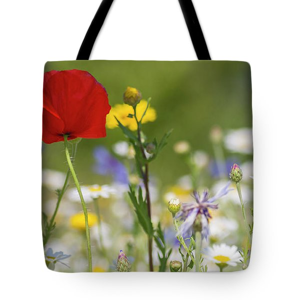 Poppy In Meadow  Tote Bag