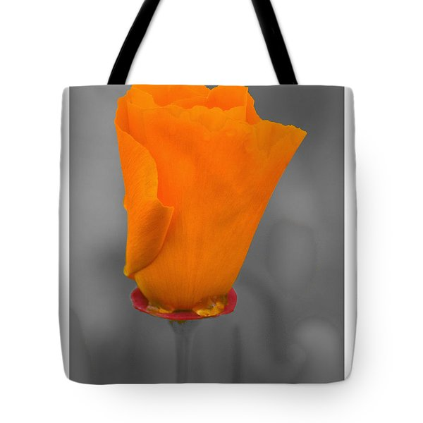 Tote Bag featuring the photograph Poppy In Tasmania by R Thomas Berner