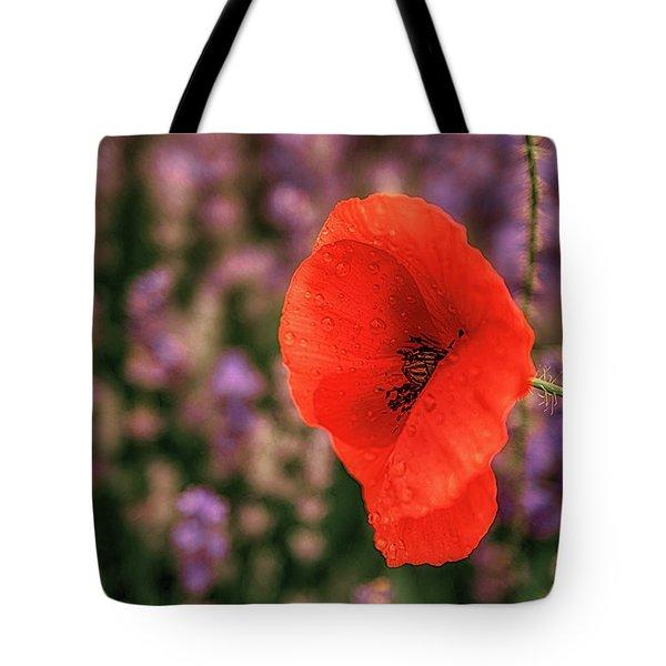 Poppy In The Lavender Field Tote Bag