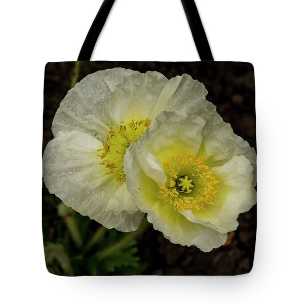 Tote Bag featuring the photograph Poppy Pair by Jean Noren