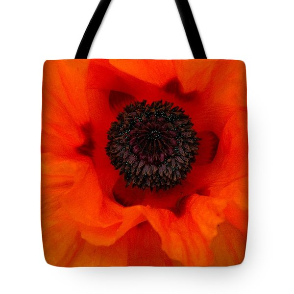 Tote Bag featuring the painting Poppy by Renate Nadi Wesley