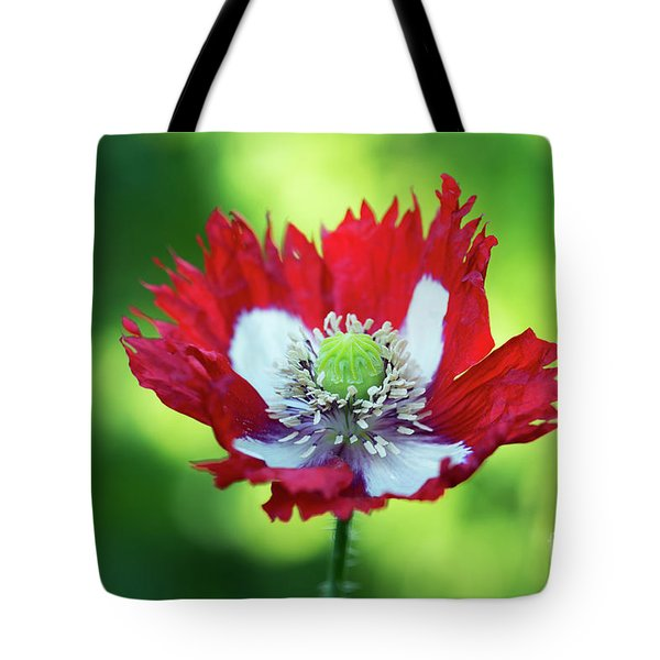 Tote Bag featuring the photograph Poppy Victoria Cross by Tim Gainey