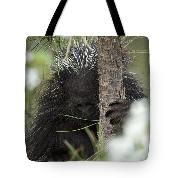 Porcupine Check-out Tote Bag