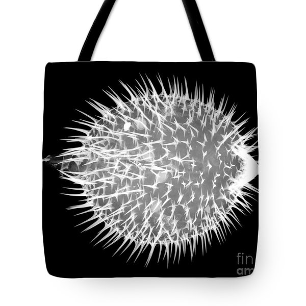 Porcupine Puffer Tote Bag by Ted Kinsman