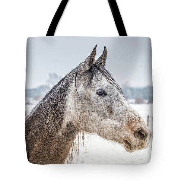 Portrait Amigo Tote Bag