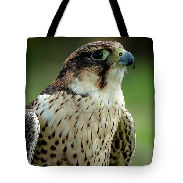 Tote Bag featuring the photograph Portrait Bird  by Cliff Norton