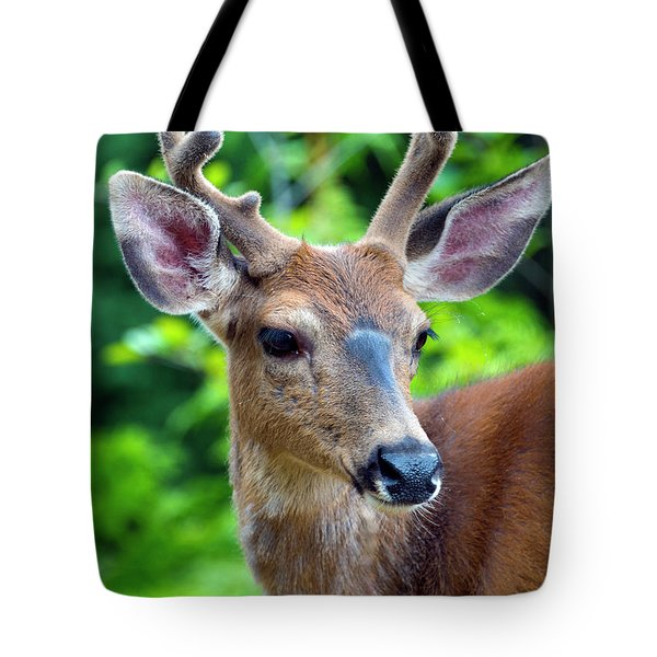 Portrait In Velvet Tote Bag