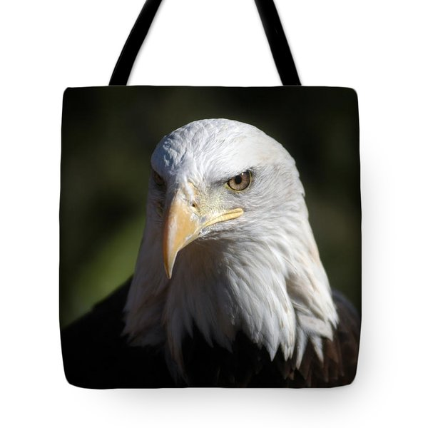 Portrait Of A Bald Eagle Tote Bag