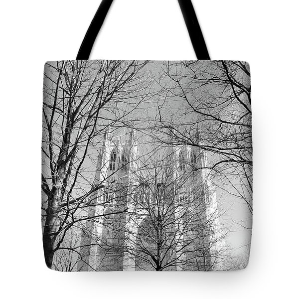 Portrait Of A Cathedral Tote Bag