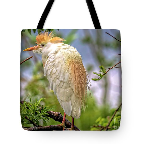 Portrait Of A Cattle Egret Tote Bag