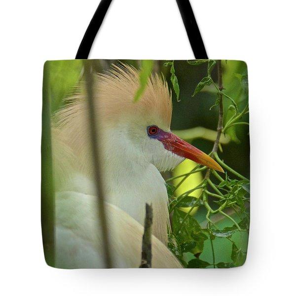 Portrait Of A Cattle Egret Tote Bag