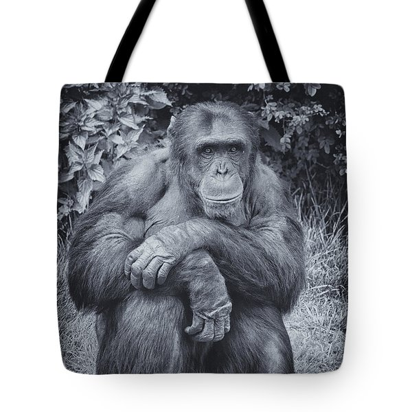Portrait Of A Chimp Tote Bag
