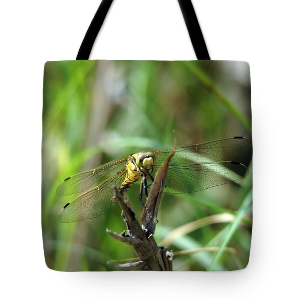 Portrait Of A Dragonfly Tote Bag