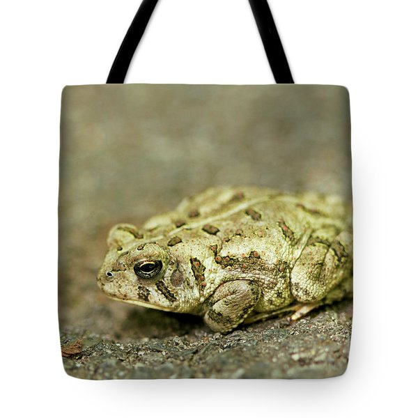Tote Bag featuring the photograph Portrait Of A Grumpy Toad - Fowler's Toad by Jane Eleanor Nicholas