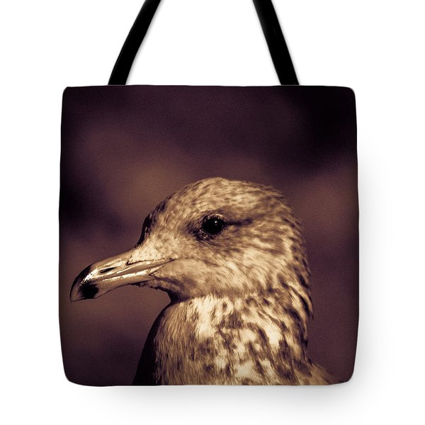 Tote Bag featuring the photograph Portrait Of A Gull by Lora Lee Chapman
