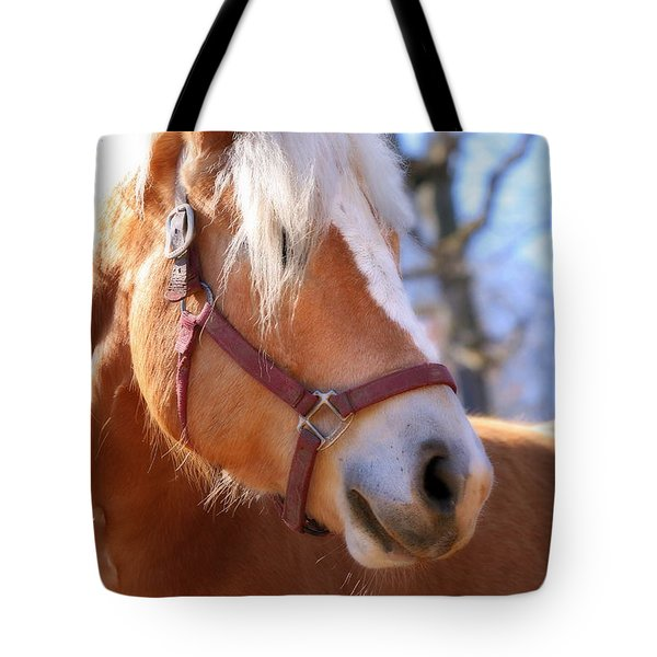 Tote Bag featuring the photograph Portrait Of A Haflinger - Niko by Angela Rath