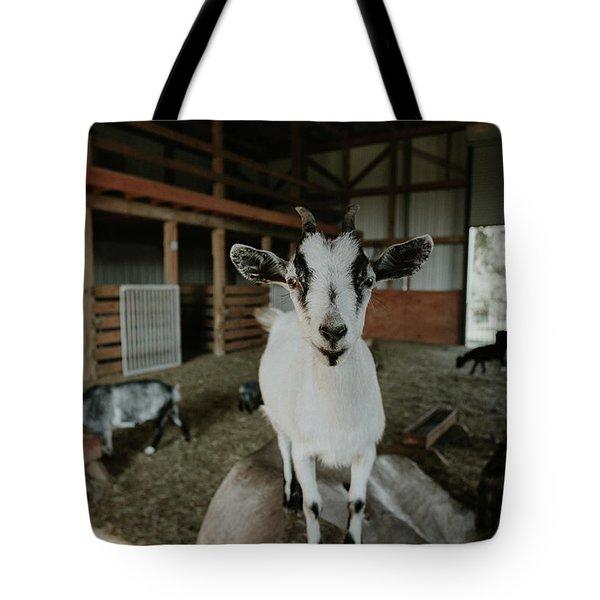 Portrait Of A Happy Goat Tote Bag