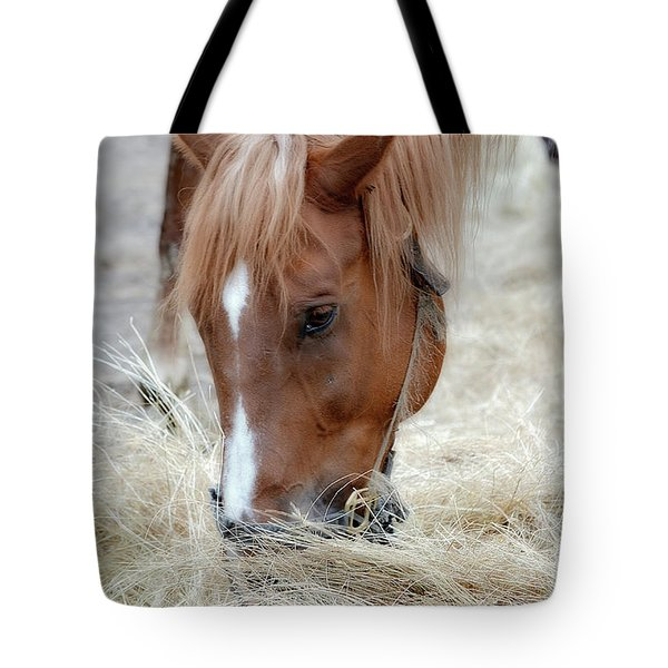 Portrait Of A Horse Tote Bag by Brenda Bostic