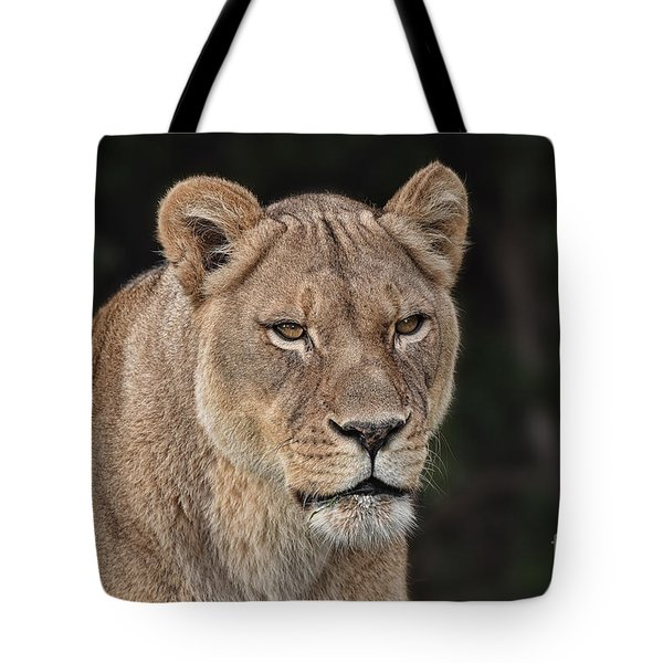 Portrait Of A Lioness II Tote Bag