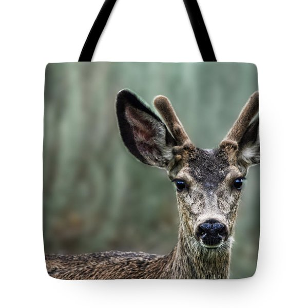 Portrait Of A Male Deer Tote Bag by Jim Fitzpatrick