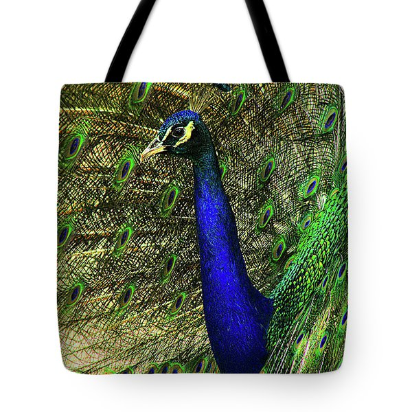 Tote Bag featuring the photograph Portrait Of A Peacock by Jessica Brawley