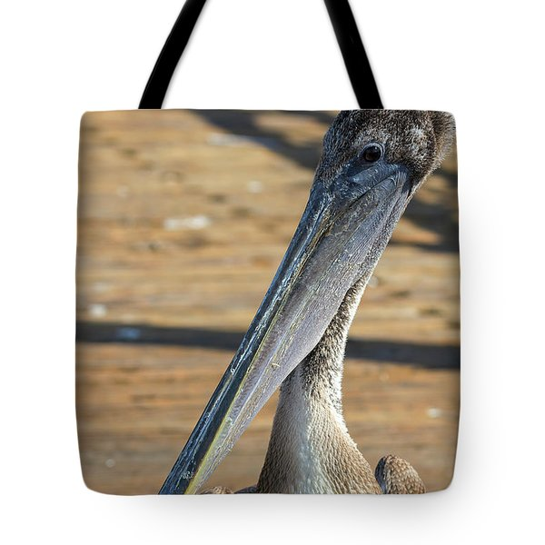 Portrait Of A Pelican On The Pier Tote Bag