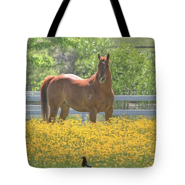 Portrait Of A Quarter Horse Tote Bag by Donna Kennedy