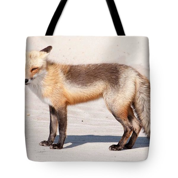 Portrait Of A Red Fox Tote Bag