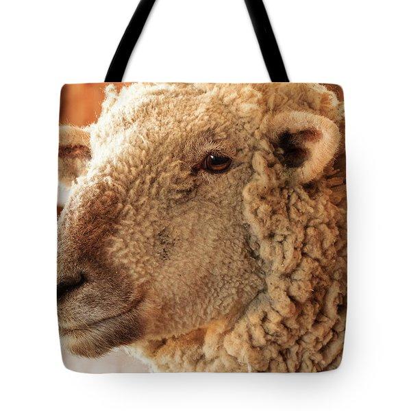 Portrait Of A Southdown Sheep Tote Bag