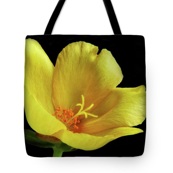 Tote Bag featuring the photograph Portrait Of A Yellow Purslane Flower by David and Carol Kelly