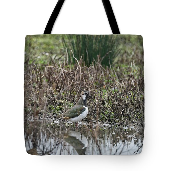 Portrait Of Beautiful Lapwing Bird Seen Through Reeds On Side Of Tote Bag by Matthew Gibson