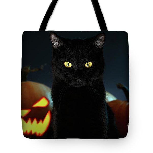 Portrait Of Black Cat With Pumpkin On Halloween Tote Bag