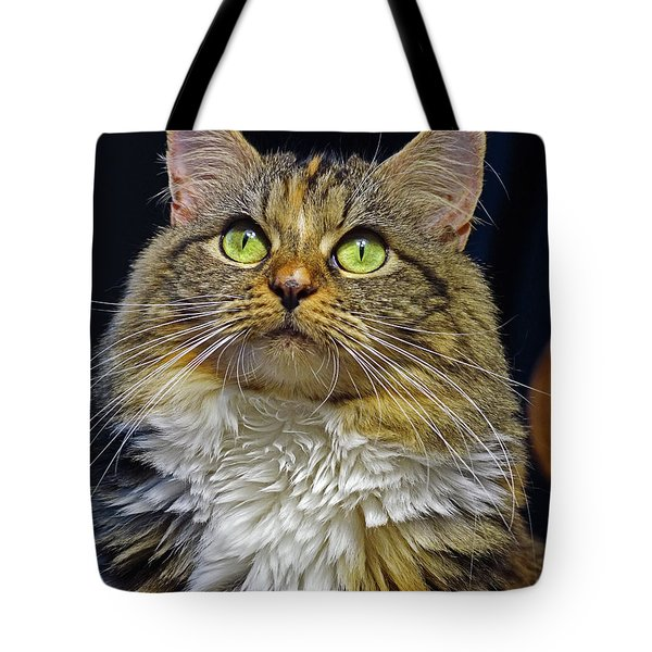 Portrait Of Holly Tote Bag by Larry Nieland