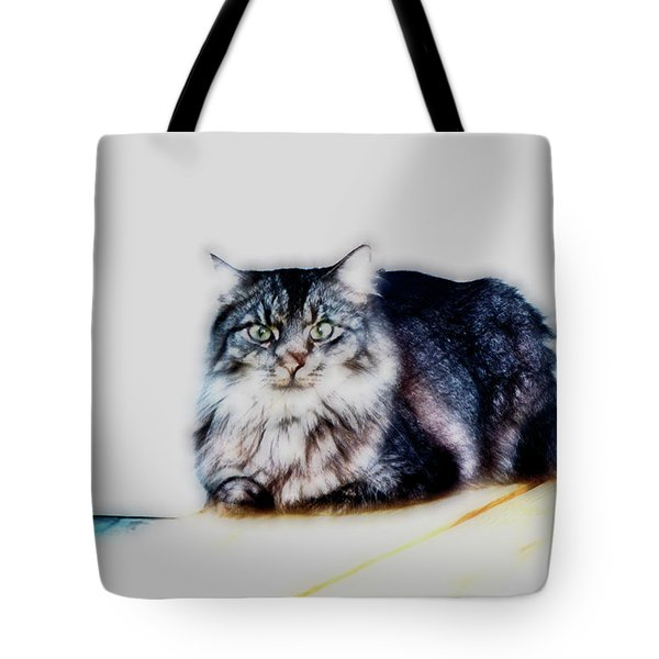 Portrait Of Maine Coon, Mattie Tote Bag by Gina O'Brien