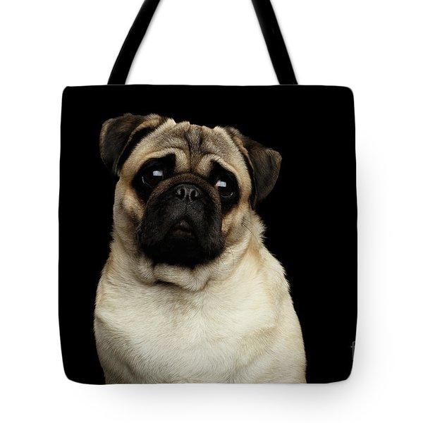 Portrait Of Pug Tote Bag by Sergey Taran