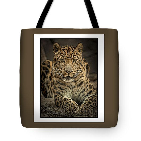 Tote Bag featuring the photograph Poser by Cheri McEachin