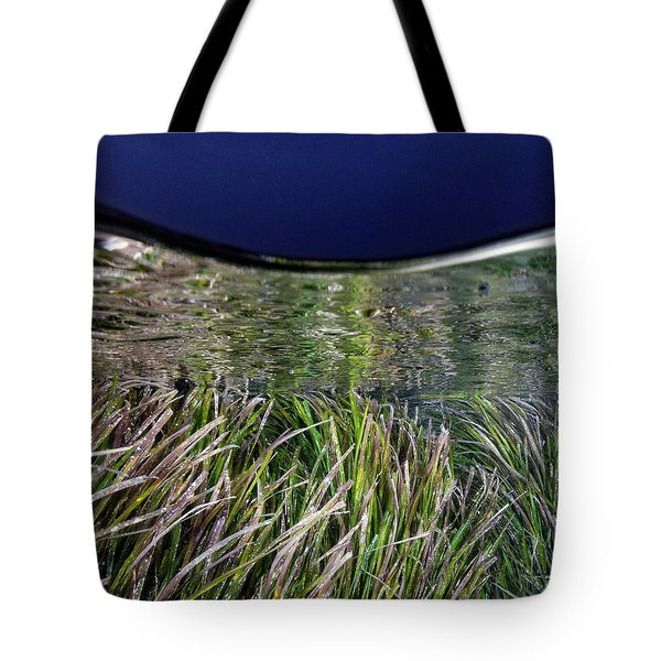 Tote Bag featuring the photograph Posidonia And The Blue Hour by Rico Besserdich
