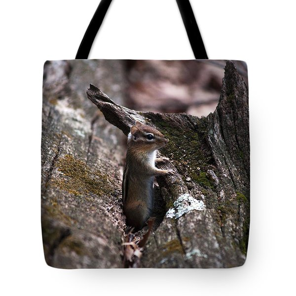 Posing #1 Tote Bag by Jeff Severson
