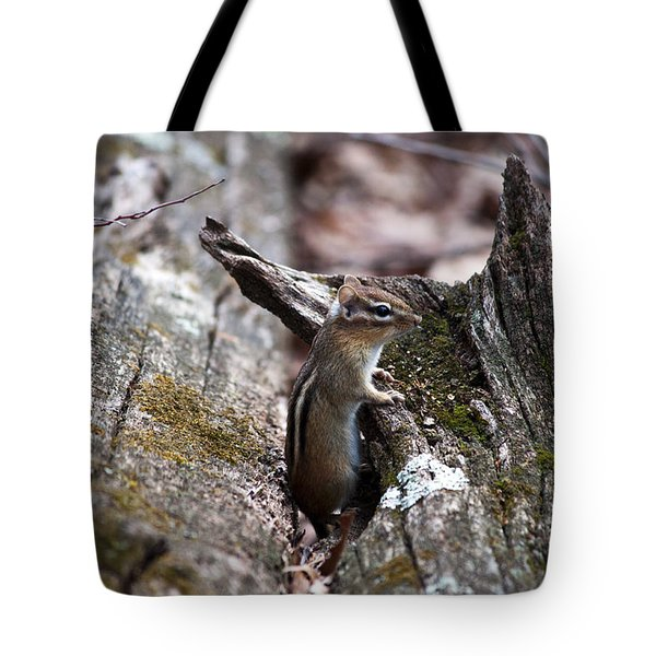 Tote Bag featuring the photograph Posing #2 by Jeff Severson
