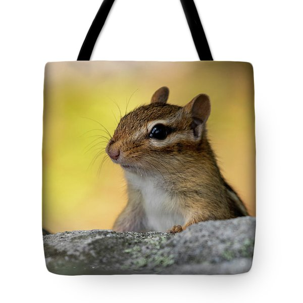 Tote Bag featuring the photograph Posing Chipmunk by Betty Pauwels