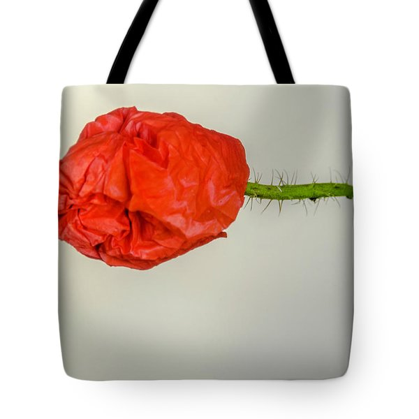 Posing Fire Red Poppy Tote Bag
